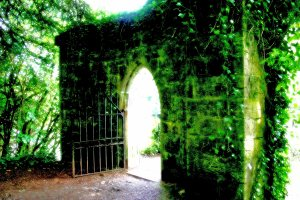 Threshold-at-Cong-Abbey